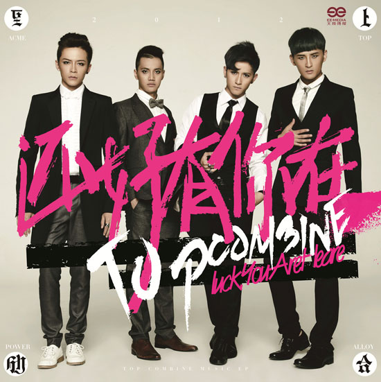 Image result for Top Combine album cover